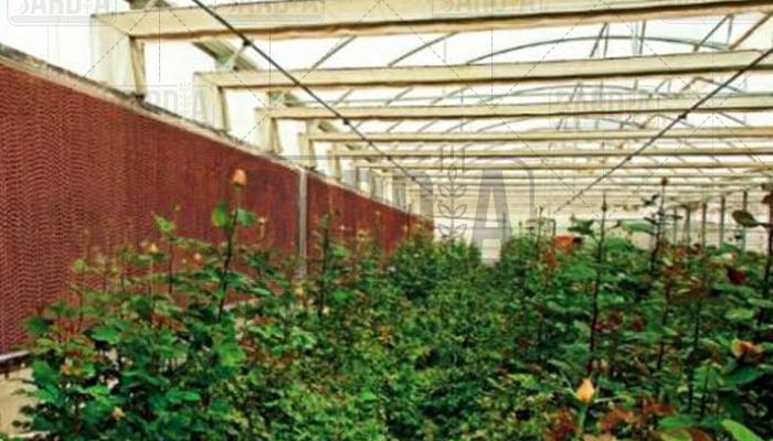 فروش پد سلولزی گلخانه